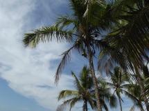 costa-rica-291597_640